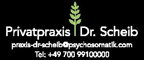 Privatpraxis Dr Scheib Berlin Ketamininfusionen bei Depressionen